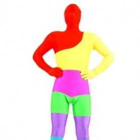 Colorful Lycra Spandex Morph Zentai Suit